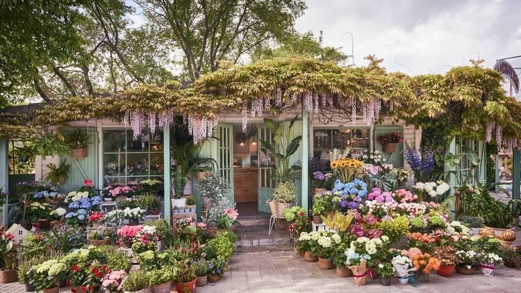 Las floristerías con más encanto de Madrid