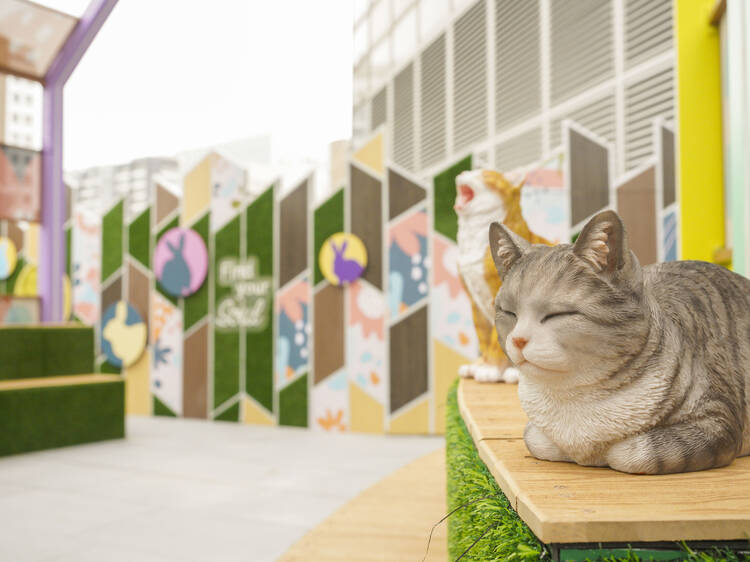 Meow Plaza