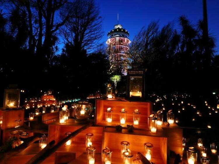 Enoshima Shonan Candle