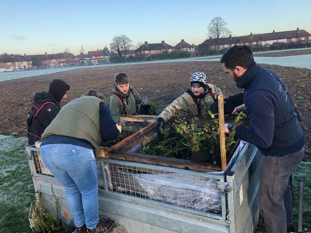 A brand-new forest has been planted in Dagenham