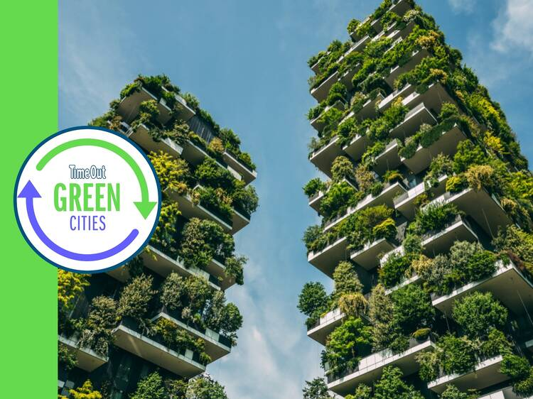 Milan is going to plant three MILLION new trees by 2030
