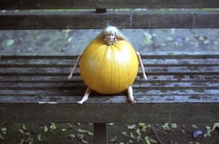 Pumpkin (1998).JPG
