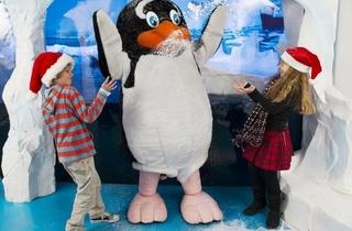 Meet Father Christmas at Sea Life London Aquarium