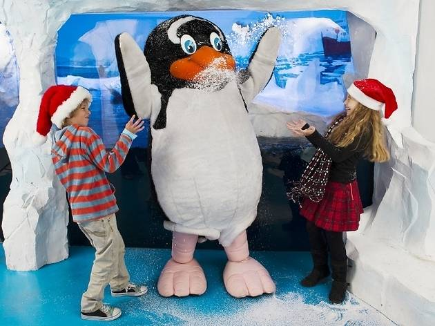 Meet Father Christmas at Sea Life London Aquarium