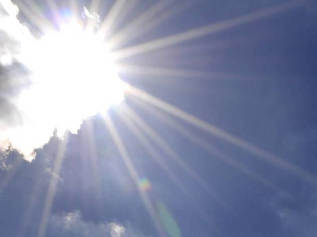 SUN_CREDIT_ScottWishart.jpg