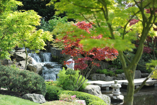 Discover the tranquil Kyoto Garden in Holland Park