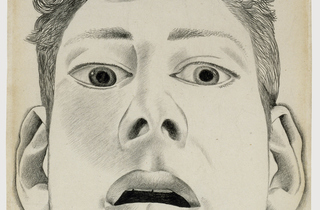 Lucian Freud: Drawings
