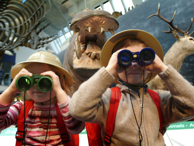 September Dino Snores at the Natural History Museum SOLD OUT