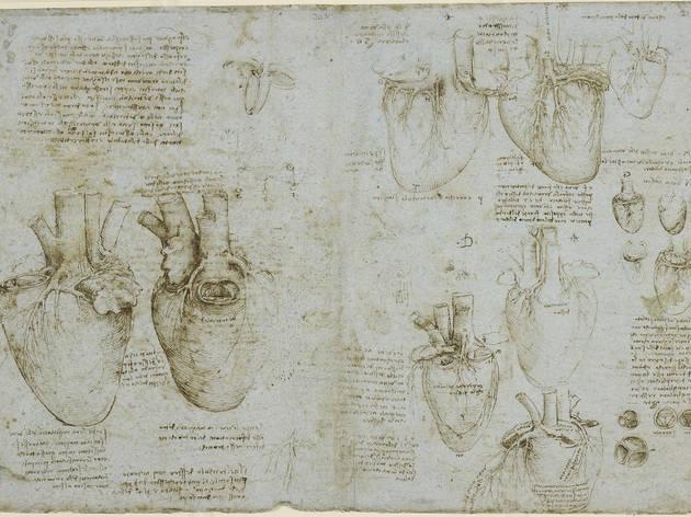 Leonardo da Vinci in the history of dissection