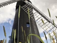 Brixton Windmill Open Days
