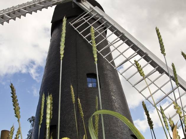 Brixton Windmill Open Days