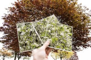 Nottingham Trent_Photography_Paavo Lyle-Smythe. Deck of mirrors.jpg
