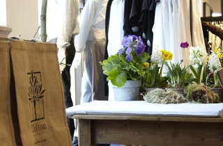 COS and Clifton Nurseries pop up