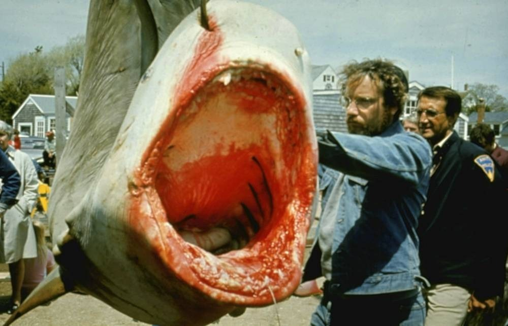 The 100 best horror films, horror movies, jaws