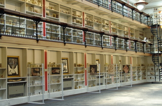 Barts Pathology Museum's Macabre Autumn Seminar Series