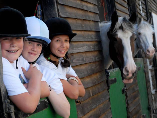 Merton Active Plus Riding Courses