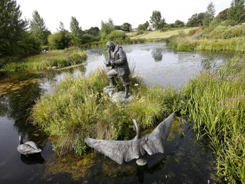 Enjoy a Sunday lunch at the London Wetland Centre