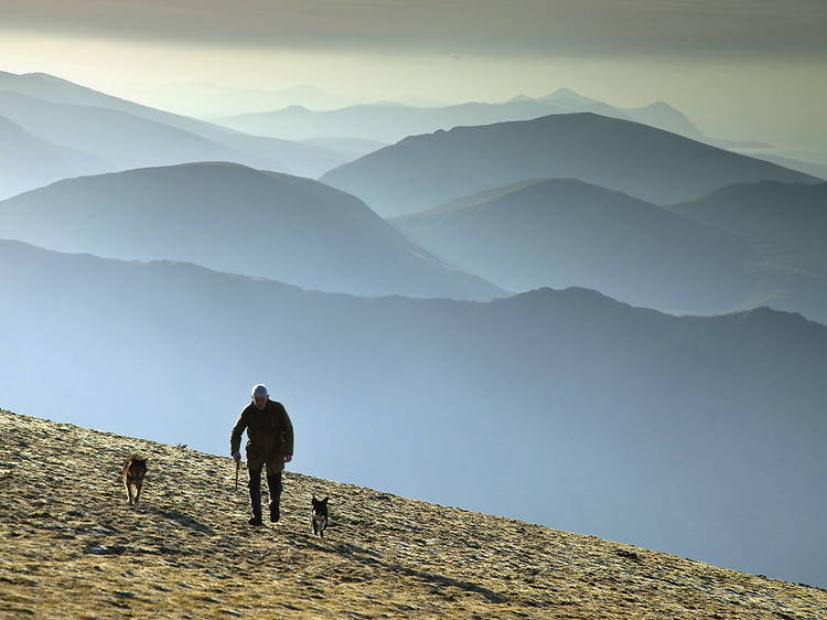 Climb to the very top of Wales