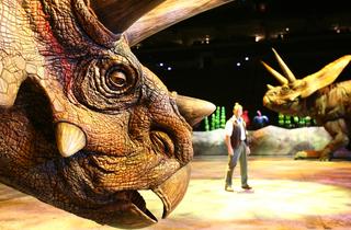 Torosaurus Joan Marcus copyright CPC 2008.jpg