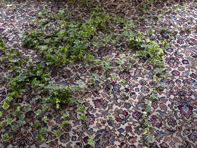 Delfina Foundation, Abbas Akhavan, Study for a Garden, 9 October - 20 November 2012.jpg
