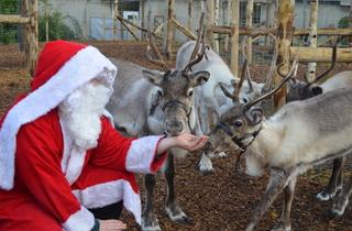 Meet Santa and his Reindeer