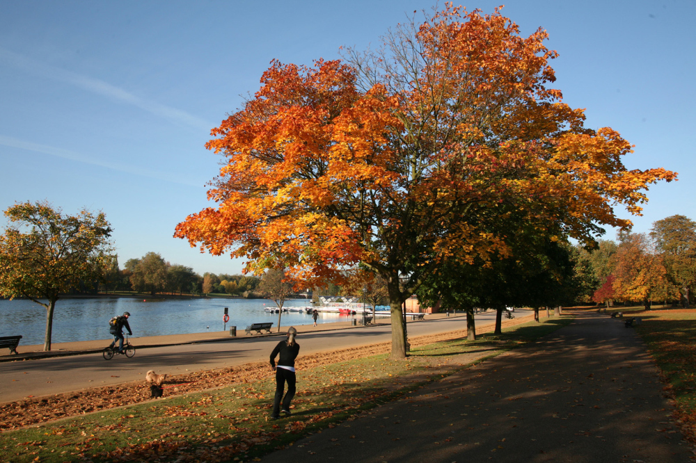 13 London parks for autumn walks