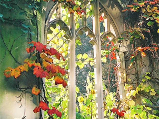 Hidden gardens and green spaces