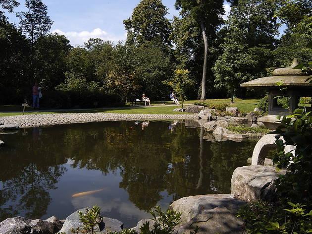 (Kyoto Garden, Holland Park - © Andrew Brackenbury)