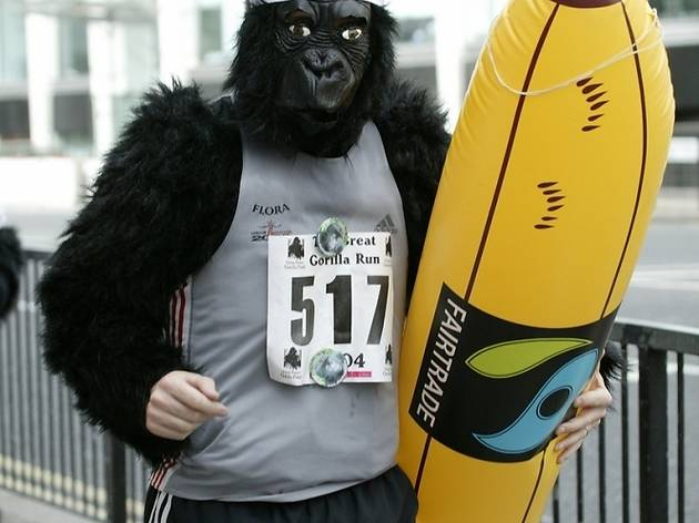 The Great Gorilla Run 2012