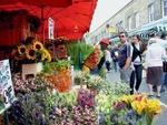 A pocket-friendly stroll through Columbia Road Flower Market