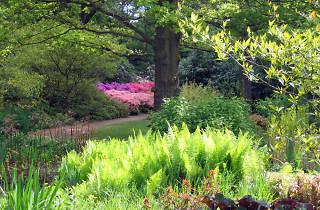 (© GardenVisit.com)