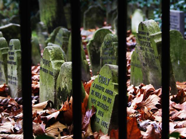 Pet Cemetery, Hyde Park - John Gass.jpg