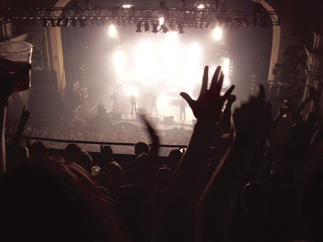 Music – gigs and festivals