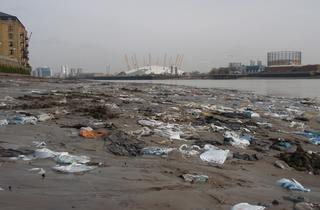 Thames Foreshore Clean-Up