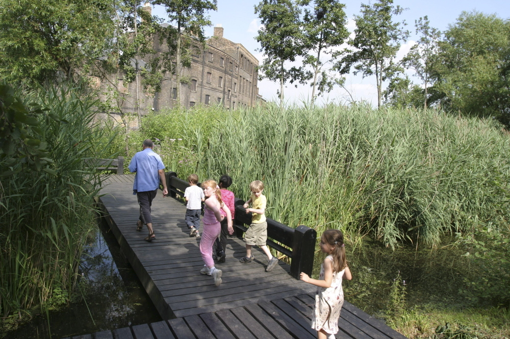 Go pond dipping at Camley Street Natural Park