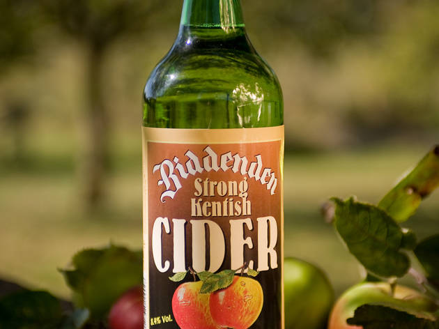 Real English Cider and Perry Festival