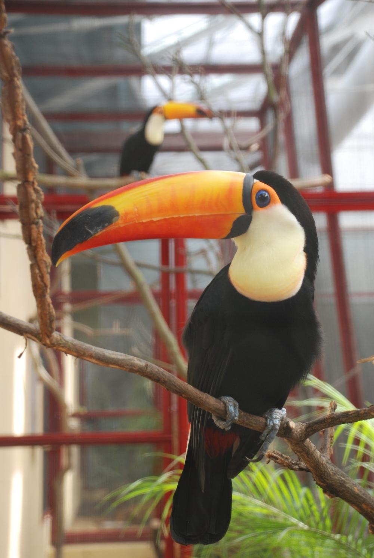 Zoos & aquaria