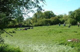 Perivale Wood Local Nature Reserve Open Day