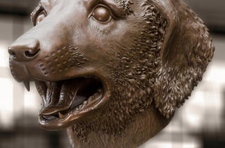 Ai Weiwei, Circle of Animals - Zodiac Heads, Dog (2010) Bro.jpg