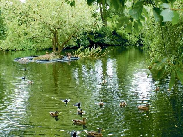 13 stunning green spaces to explore in the sun this bank holiday weekend