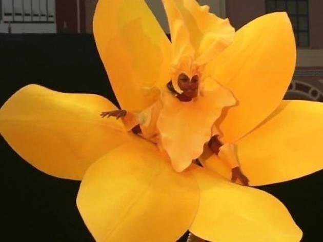 carnival costume flower.jpg