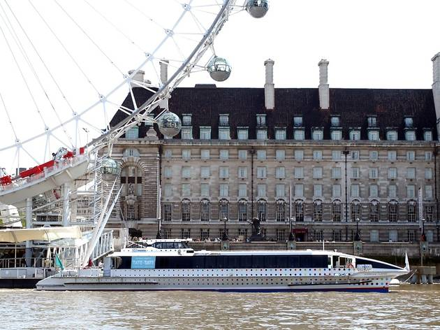 Thames Clippers Tate to Tate boat 3.jpg