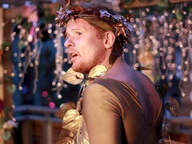 Theatre_MidsummerNightsDream_press2011.jpg