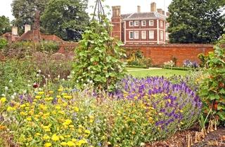 Ham House Behind-the-Scenes Tours