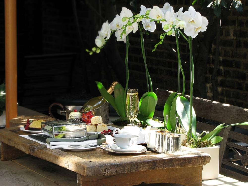 Japanese Garden At Blakes