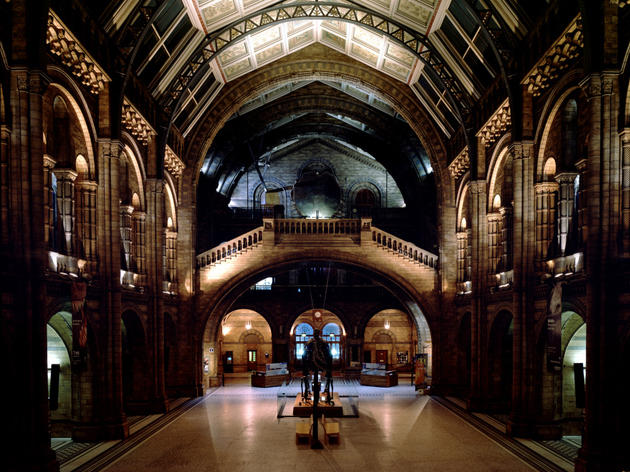 Central Hall and Dippy C Natural History Museum.jpg