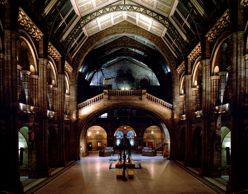 New Year's Eve at the Natural History Museum