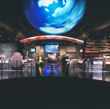 Must See At American Museum Of Natural History