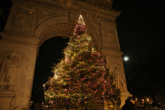 Washington Square Park Christmas Tree