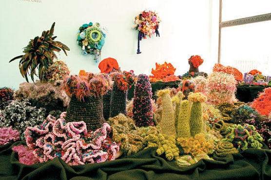 WHO NEEDS ANEMONES? Crocheted coral raises awareness and eyebrows.